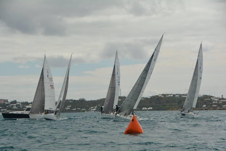 Winter regatta